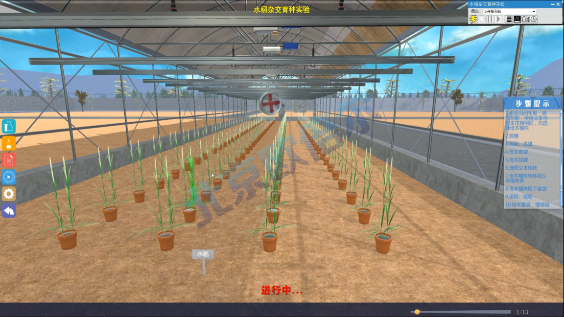 北京欧倍尔3D水稻杂交育种虚拟仿真软件