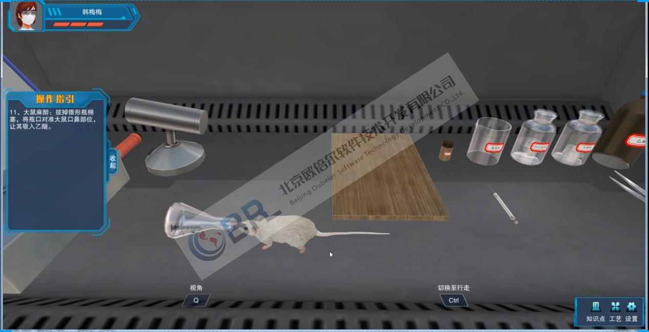 大鼠肝切除手术3D虚拟仿真软件