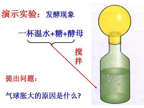 发酵罐及发酵实验虚拟仿真软件