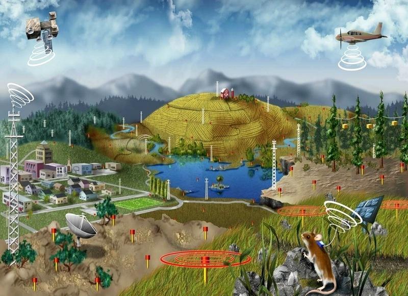 生态学类虚拟仿真实验软件